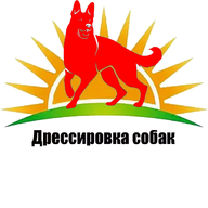 nsdog.ru